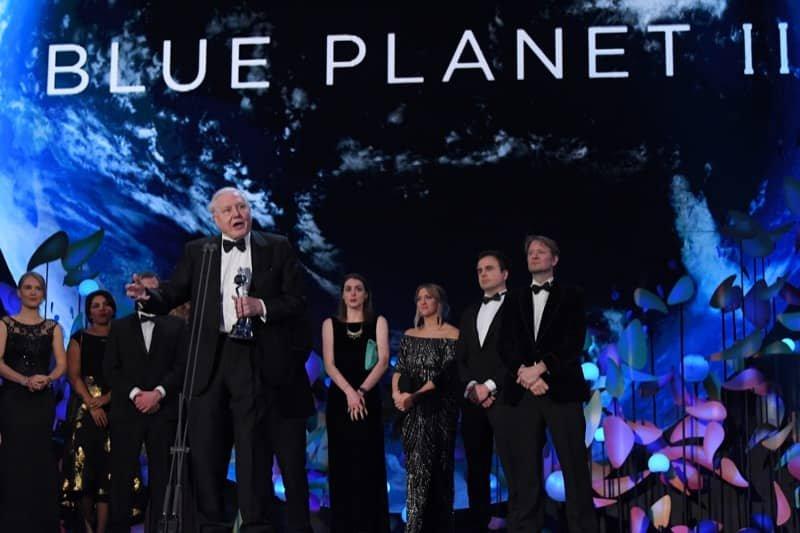 BLUE PLANET TEAM